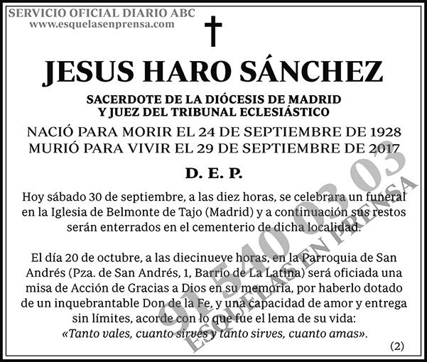 Jesús Haro Sánchez